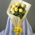 6 Rosas por un Año