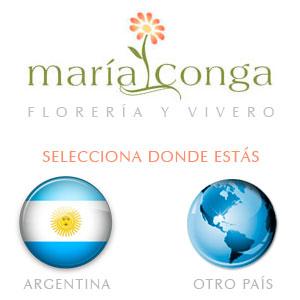 María Conga | Florería y Vivero
